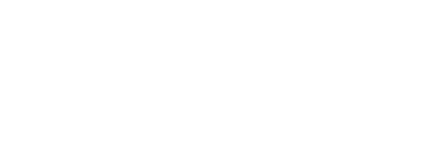 Flynn Sports Management